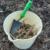 jardineira_alentejana
